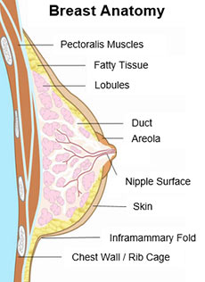 implant-placement